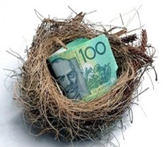money in the nest