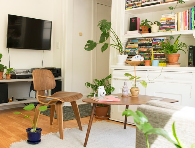 living room with greenery