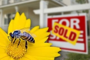 September 2016 - Mastering the Spring Property Market