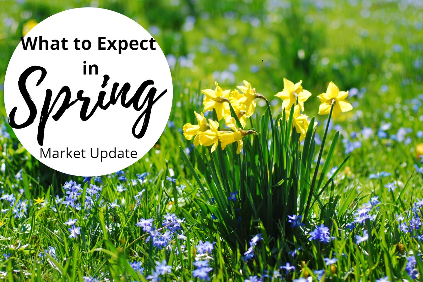 What To Expect In Spring - September Market Update
